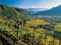 Wellness Hotel Sudtirol Nursin