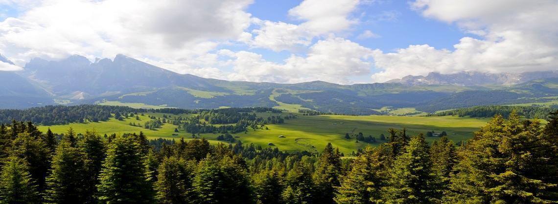 Cabinovia Ortisei - Alpe di Siusi